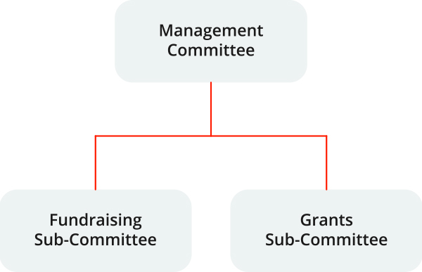 Committee Diagram: Management Committee at the top with Fundraising Sub-Committee and Grants Sub-Committee underneath